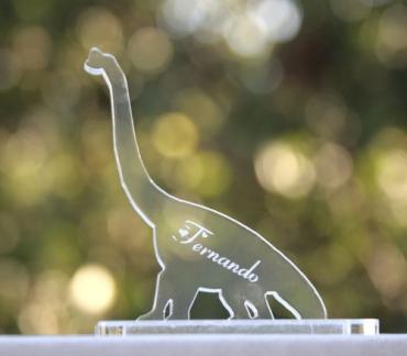 marque place gravé et personnalisé  : dinosaures 1