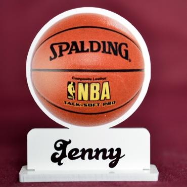 marque place couleur ballon basket NBA