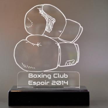 trophée boxe 03