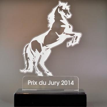 trophée équitation 02